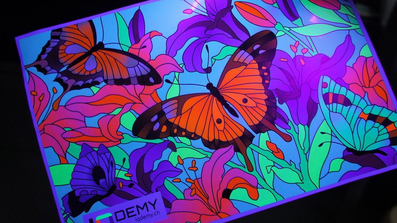 iqdemy_glow